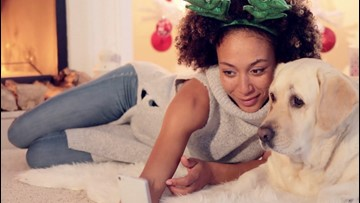 Your Pet Will Stick to a New Year's Resolution
