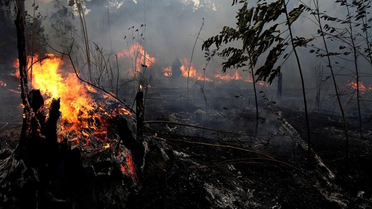 Brazil Amazon Fires