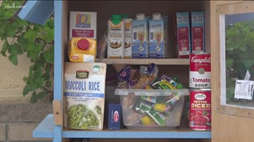San Diego couple turns library box into makeshift food pantry