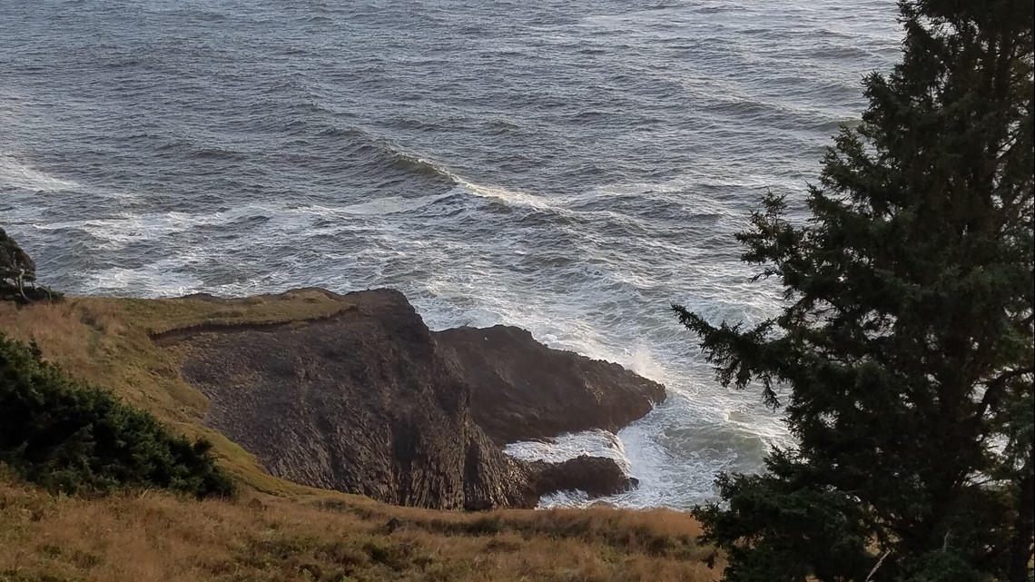 """depoe bay single women First up is scarback, whom newell calls depoe bay's most famous  """"the  females literally pushed their calves up to our boat, and they're like,."""