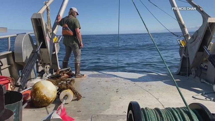 Dead zone lingers in ocean off Oregon Coast longer than expected
