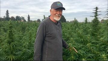 That's not cannabis. More Oregon farms growing hemp