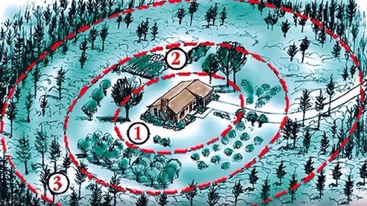 How to build a wildfire defensible space around your home