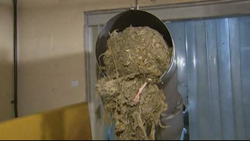 City of Tacoma 'backed up' by flushable wipes