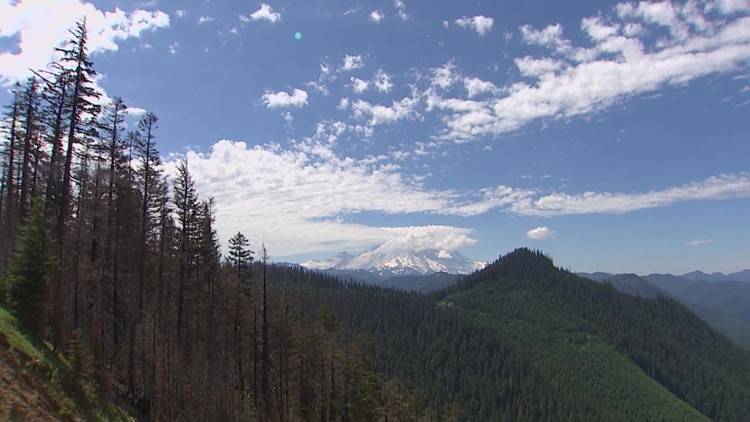 What drives big wildfires in western Washington? This meteorological phenomenon is a factor