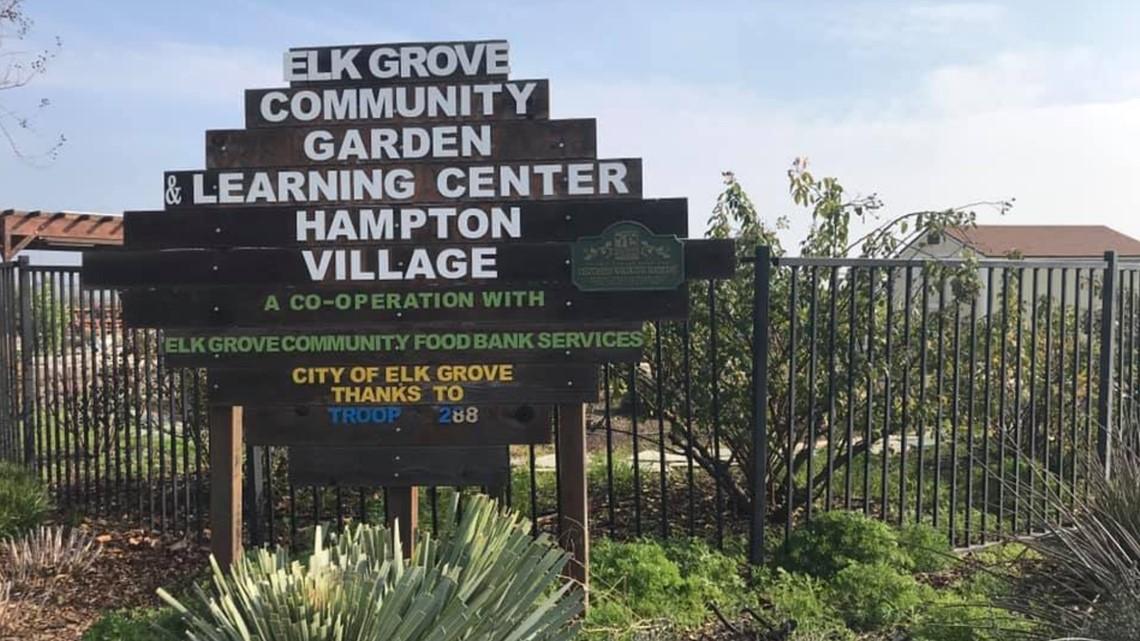 Hundreds of dollars worth of equipment stolen from elk grove community garden Garden grove breaking news now