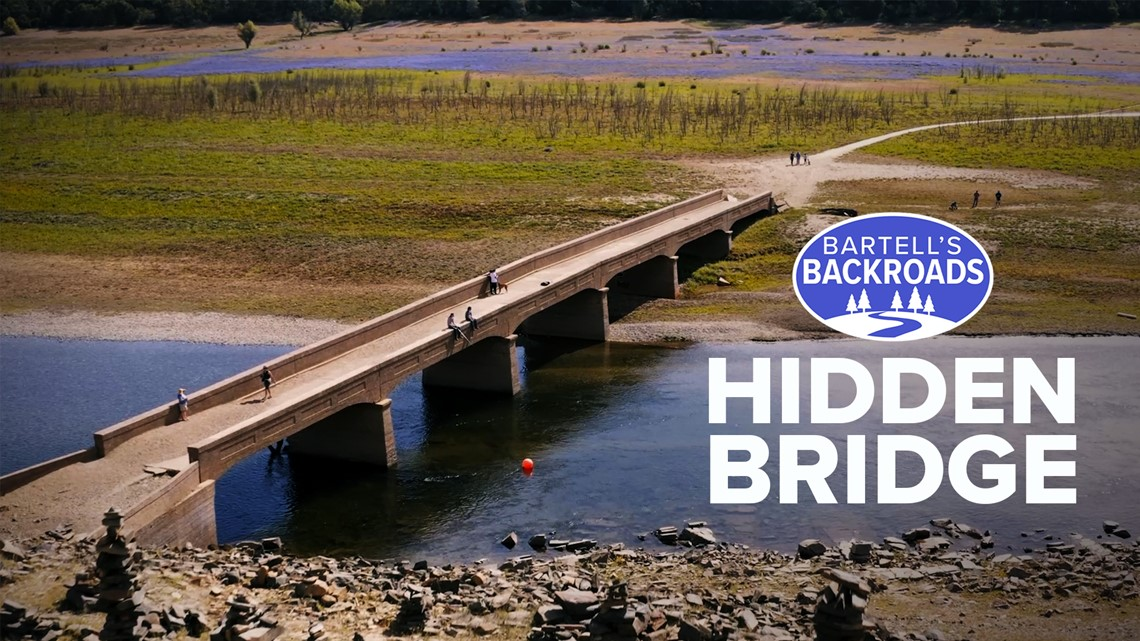 Wildflowers lead to Folsom Lake's hidden bridge | Bartell's Backroads