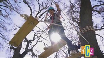 Tree Top Sac, a tree top adventure park  | California Playground