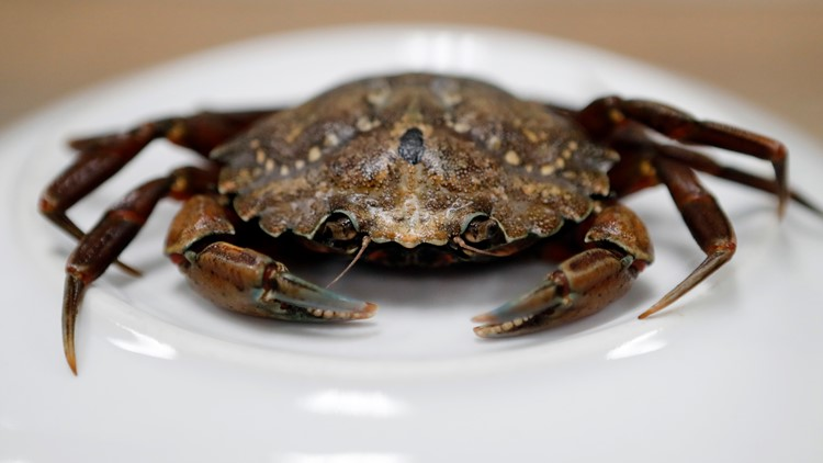 Unwelcome and tough to evict: California's costly, uphill battle against invasive species