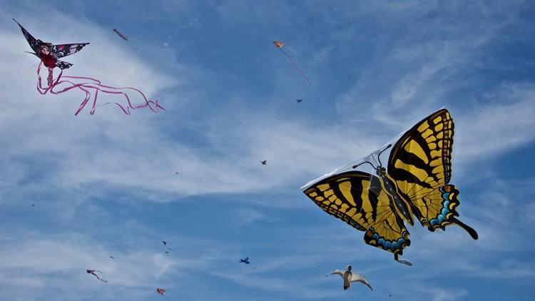 Kites generic
