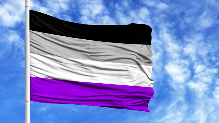LGBTQIA+ Pride: What is International Asexuality Day?