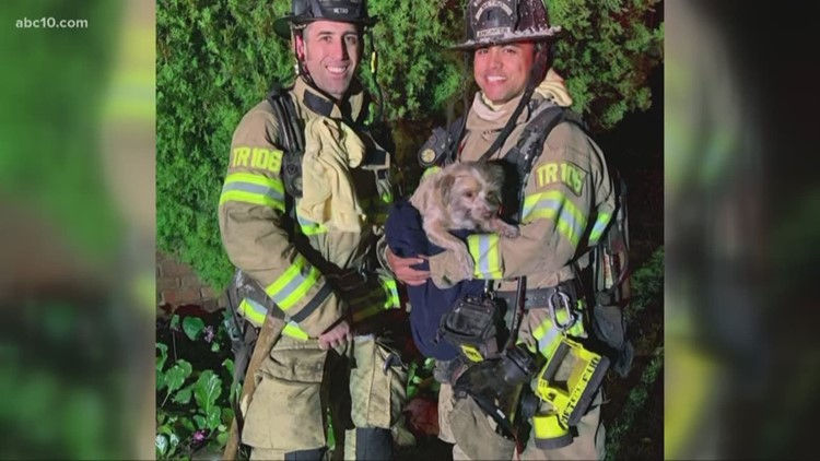 Firefighters describe tense rescue of Carmichael pup