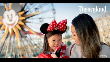 It's Springtime at the Disneyland Resort!