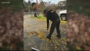 Sacramento Sheriff's SWAT team helps veteran with yard work
