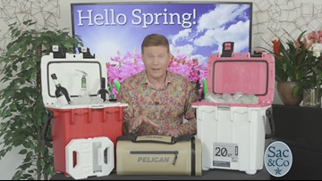 What's New for Spring 2019?