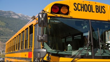 WHY GUY: Why don't school buses have seat belts?