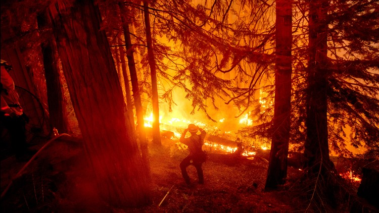 California governor signs early budget action in anticipation of wildfire season