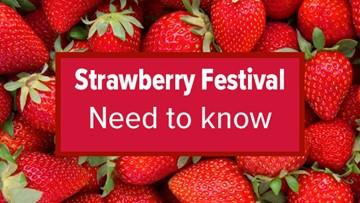 Berryfest: Strawberry Festival in Roseville returns