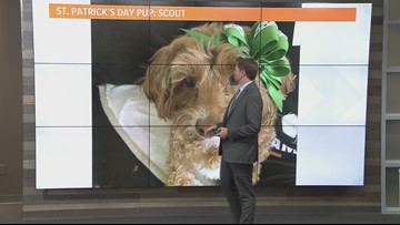 Local afternoon weather: March 18, 2019