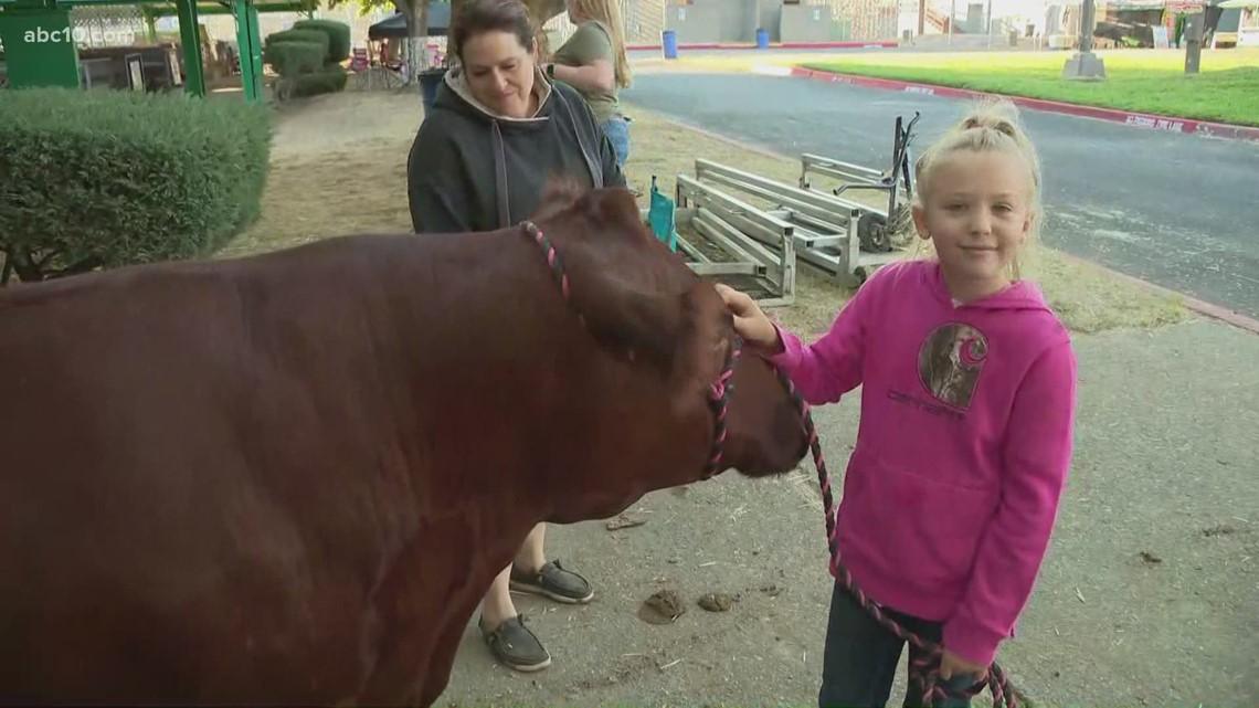 Placer County fair returns after coronavirus pandemic