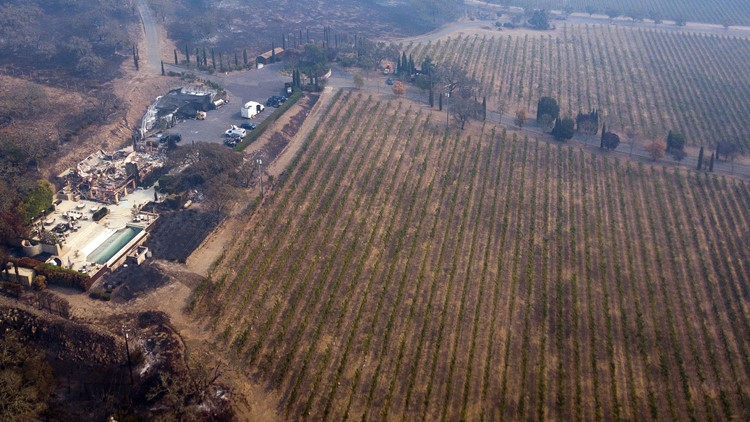 The remains of the Signorello Estate Winery are seen from the air October 11, 2017, in Napa, California. More than 200 fire engines and firefighting crews from around the country were being rushed to California on Wednesday to help battle infernos which have left at least 21 people dead and thousands homeless. / AFP PHOTO / Elijah Nouvelage (Photo credit should read ELIJAH NOUVELAGE/AFP/Getty Images)