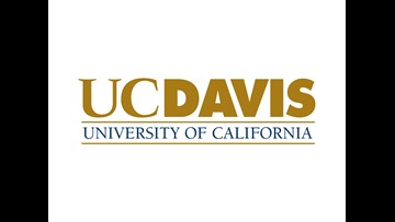 Anti-Semitic flyers found on UC Davis campus