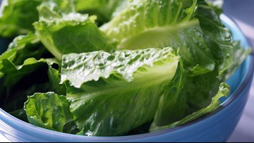 US traces lettuce outbreak to at least 1 central California farm