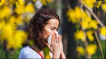 Why you shouldn't wait to treat your allergies