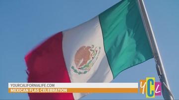 Dia de la Bandera - Mexican Flag Celebration