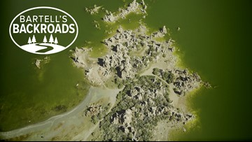 California water wars: Mono Lake's unlikely victory | Bartell's Backroads
