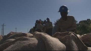California Conservation Corps prepares flood watch skills in Stockton
