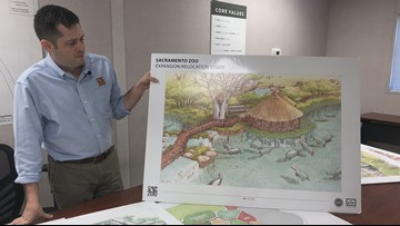 Sacramento Zoo officials on possible relocation to Sleep Train Arena: 'It's an ideal location'