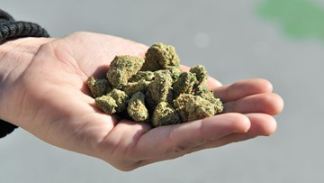 Pot deliveries can be made throughout California, regulators say