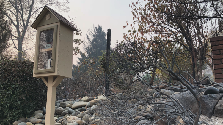 Amidst the rubble in Paradise, one 'Little Free Library' stands