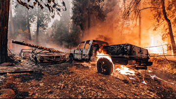 California officials focus on forest management after fires