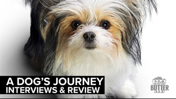 'A Dog's Journey' interviews & review | Extra Butter