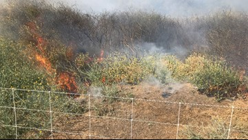Cause of West Sacramento brush fire 'undetermined,' not linked to goats