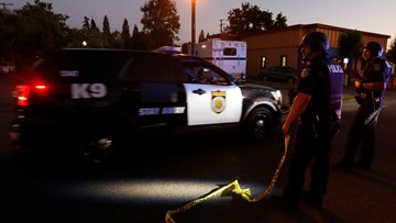 Domestic disturbance calls are among most dangerous for police officers
