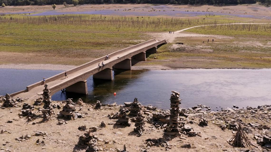 Wildflowers lead to Folsom Lake's hidden bridge   Bartell's Backroads