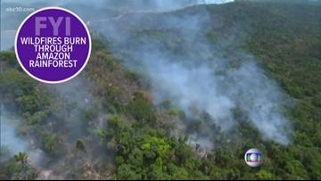 Man shot by US Marshals, wildfires rage in Amazon rainforest | FYI