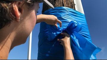 Elk Grove residents put up blue ribbons in memory of Officer Tara O'Sullivan