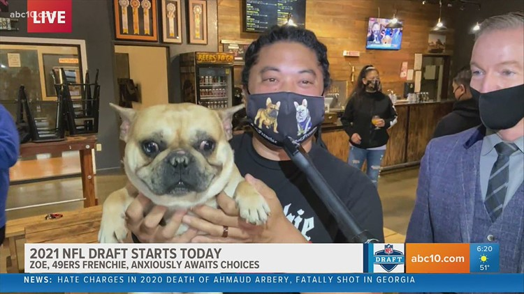 2021 NFL Draft may cause some worry, but SF 49ers emotional support dogs are on the job
