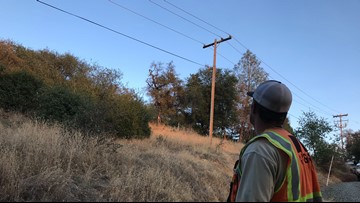 PG&E says it can't commit to expanding tree-trimming force