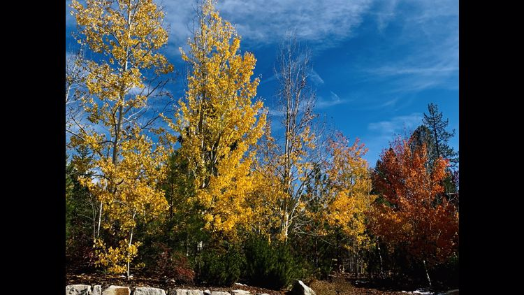 Your weather and nature photos | Fall/Winter 2021-22