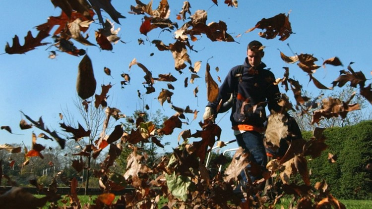 California Legislature proposes bill that would ban sale of new gas-powered leaf blowers, lawn mowers