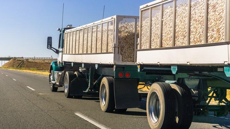 'We're dying for drivers'   A California driver shortage has trucking agencies scrambling