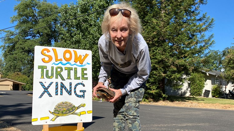 'Slow down!' One woman's quest to save turtles as they cross the street | NorCal Strong