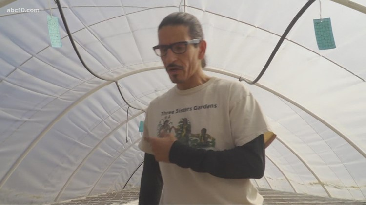 West Sacramento farmer provides free and fresh produce amid shortage