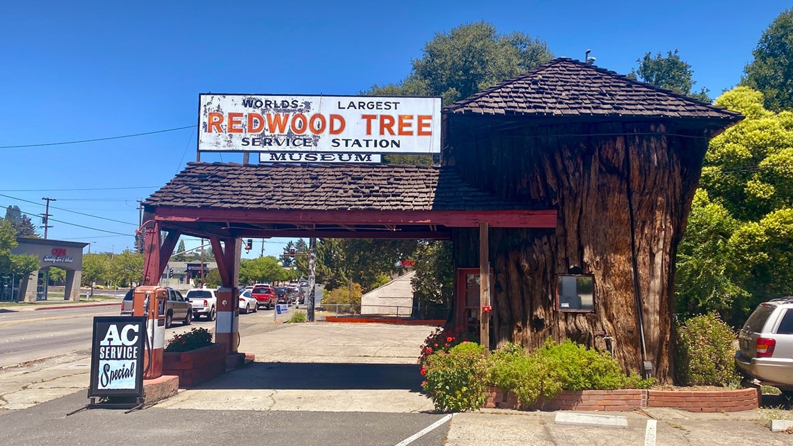 Iconic pitstop: Redwood Tree Service Station   Bartell's Backroads