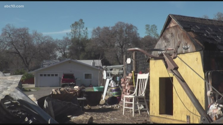 'I'm shattered' | Animal sanctuary loses every animal in barn fire